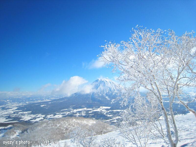 冬集大成_a0071514_19335969.jpg