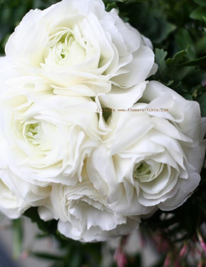 壁面装花 ドアの装花 プティブドン様_a0042928_21453287.jpg