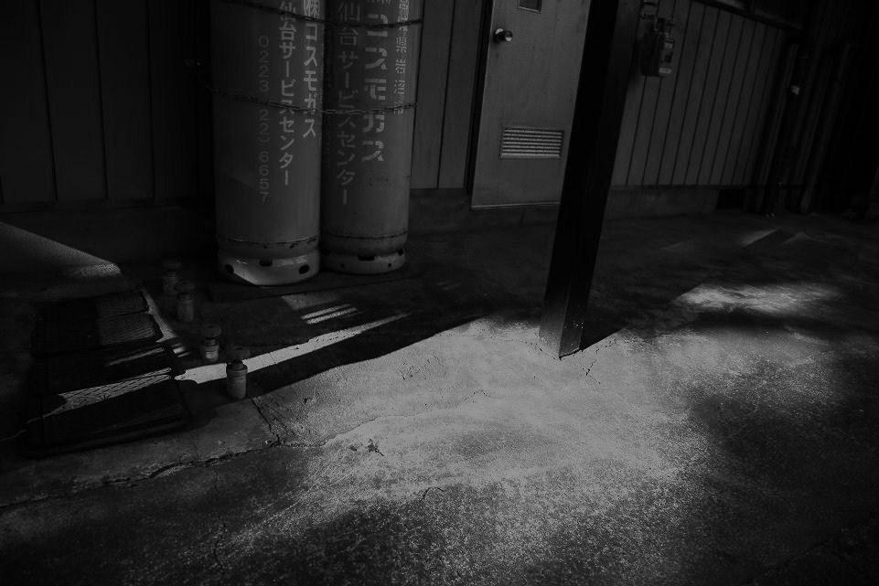 光の示す方へⅩⅢ_c0129671_2140283.jpg