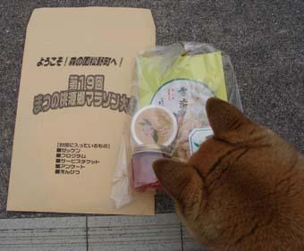 桃源郷マラソン ~ 松野町 ~_e0012580_1612282.jpg