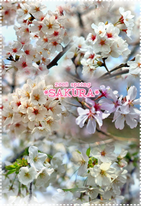 f0060689_12542349.jpg