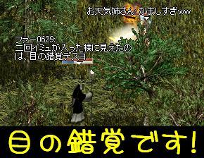 f0072010_312231.jpg