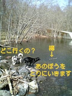 f0148927_1075370.jpg