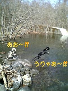 f0148927_108142.jpg