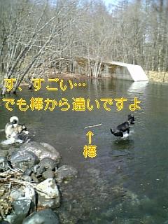 f0148927_1083760.jpg
