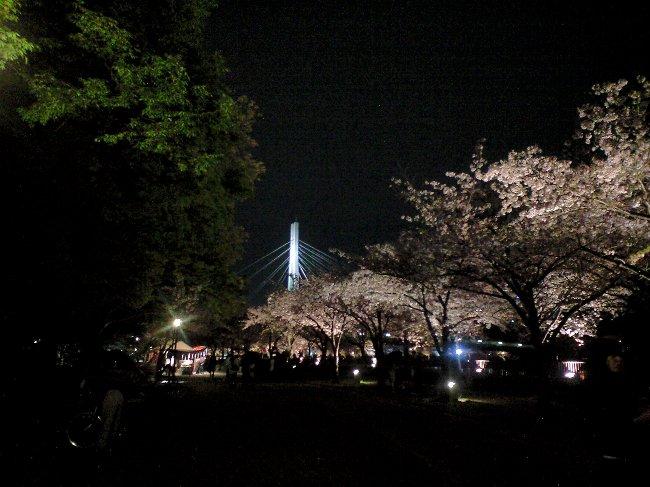 大阪城とサクラ_c0154941_21482054.jpg