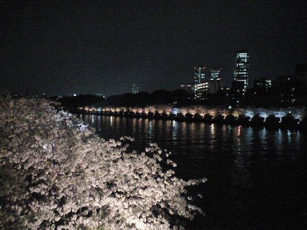 大阪城とサクラ_c0154941_21495752.jpg