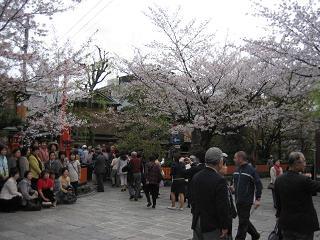 春は旅立ちの季節_c0049950_844132.jpg