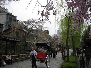 春は旅立ちの季節_c0049950_8455419.jpg