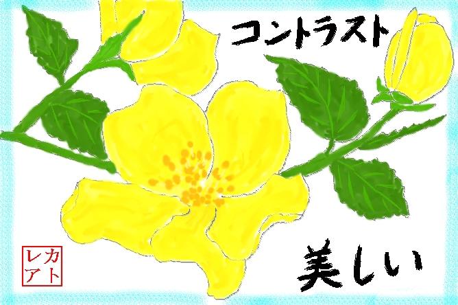 f0124098_2223742.jpg
