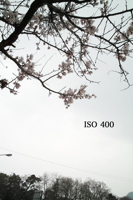 d0118803_2323215.jpg