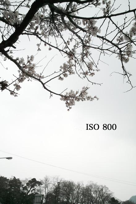 d0118803_2325047.jpg
