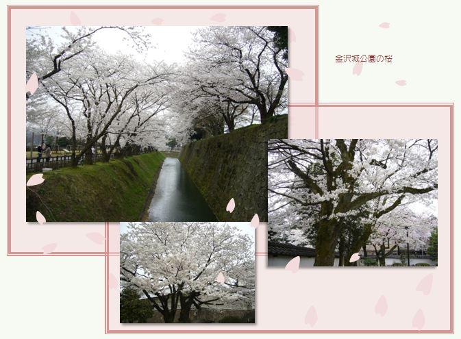 金沢から戻りました。_c0051105_14293369.jpg