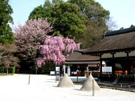 上賀茂神社2_e0048413_1324223.jpg