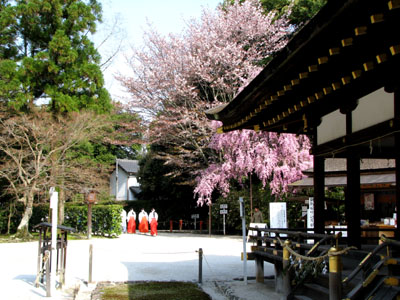 上賀茂神社2_e0048413_13244240.jpg