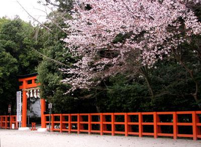 上賀茂神社2_e0048413_13252729.jpg