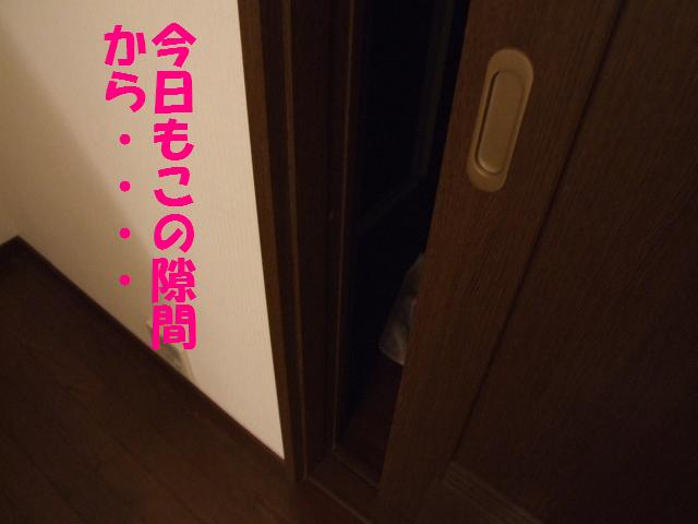 a0091448_0242062.jpg
