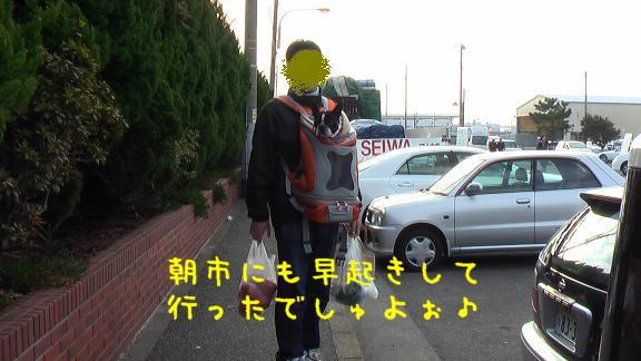 f0110861_17215248.jpg