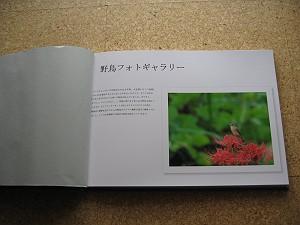 b0039170_20115040.jpg