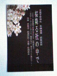 桜の夢の中/ FUJINO  YUKA_d0090888_1122611.jpg