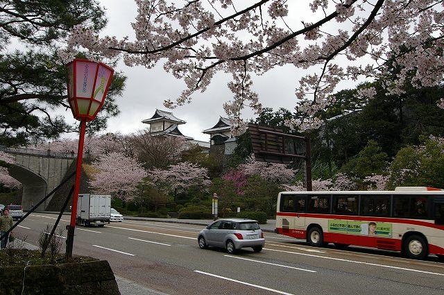 続・桜の兼六園~金沢 _d0043136_18383942.jpg