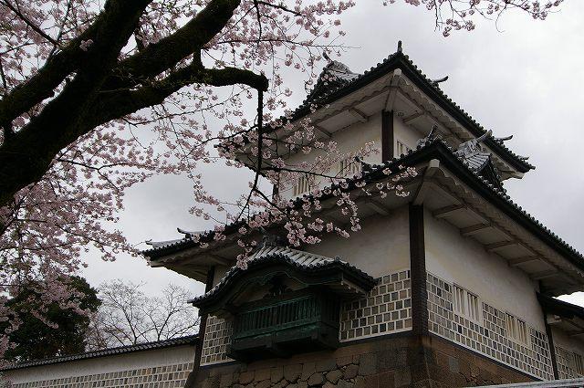 続・桜の兼六園~金沢 _d0043136_1839712.jpg