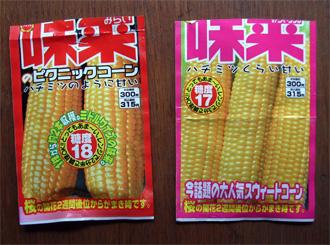トウモロコシ「味来」蒔種_c0063348_2284940.jpg