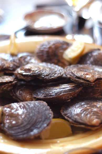 牡蛎は人を呼ぶ? Oysters gather friends?_d0047851_128439.jpg