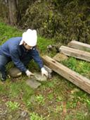 庭が材木置き場になってもーた_b0115652_2234116.jpg