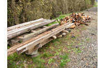 庭が材木置き場になってもーた_b0115652_2242598.jpg