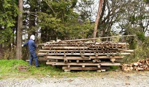 庭が材木置き場になってもーた_b0115652_2244123.jpg