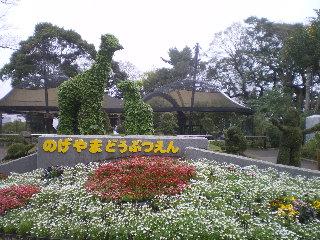 野毛山動物園  <横浜>  _c0118352_0504644.jpg