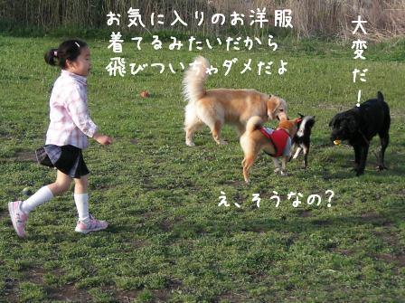 f0068501_22441132.jpg
