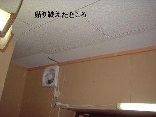 f0031037_18364957.jpg