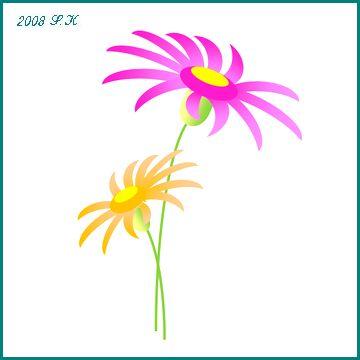 b0035639_171586.jpg