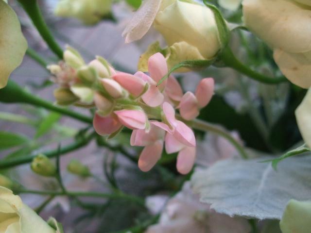 オークリーフ(バラ・緑光と桜色のアレンジメント)_f0049672_14591512.jpg