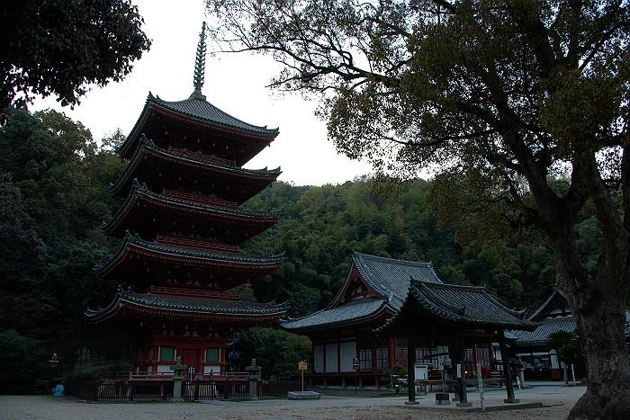 国宝の寺を訪ねる明王院_c0152379_6232760.jpg