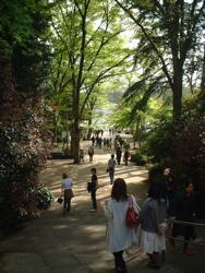 井の頭公園行って来ました。_f0110089_19161292.jpg