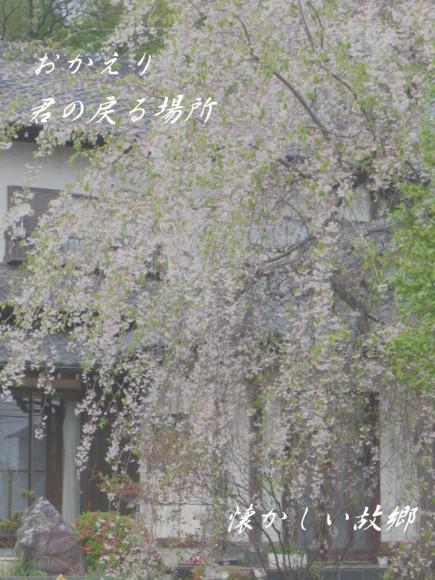 f0156895_212190.jpg