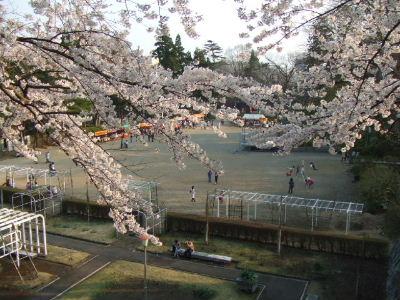 盛岡最高気温24度_e0012815_22532717.jpg