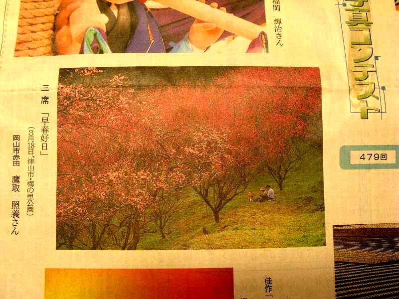 タラの芽とり_e0072023_20383735.jpg
