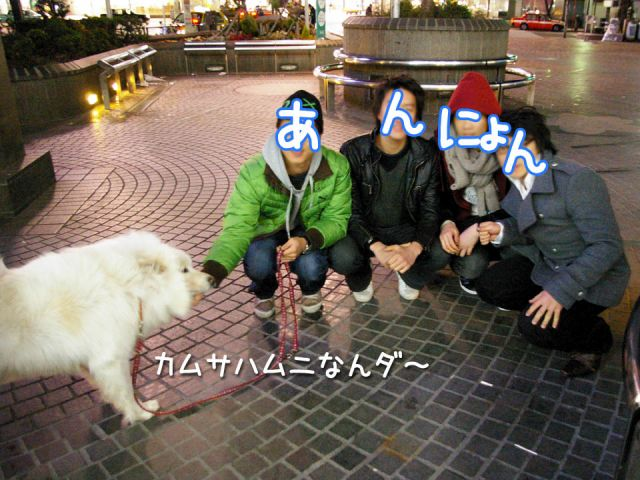 へぇ~ なお散歩_c0062832_1613752.jpg