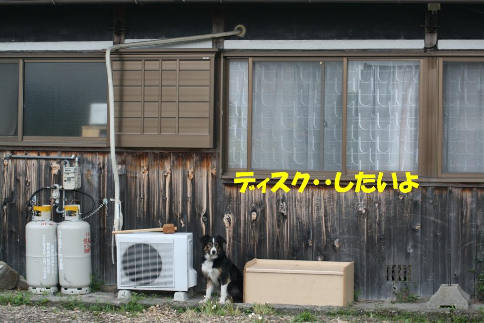 d0077740_110062.jpg
