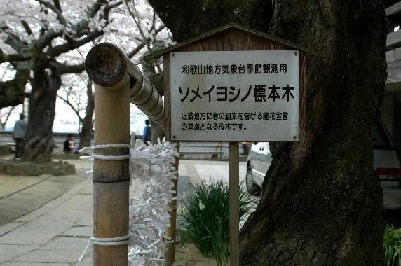 紀三井寺_b0093754_2355274.jpg