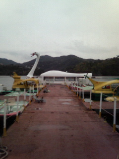☆東条湖TODAY ☆_f0002573_16212555.jpg