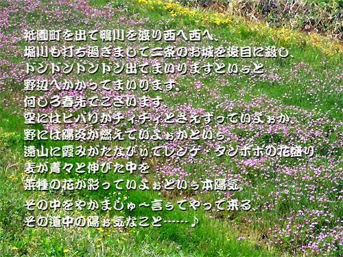 b0067481_734926.jpg