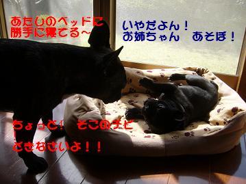 b0134197_1451123.jpg