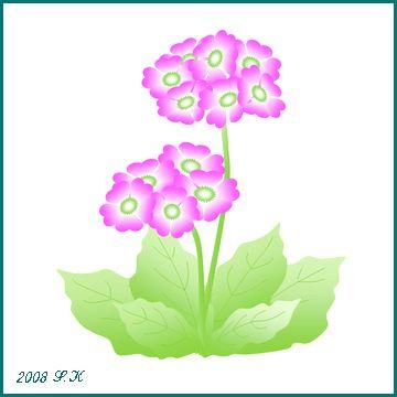 b0035639_16375195.jpg
