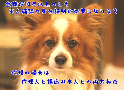 d0013149_92515.jpg