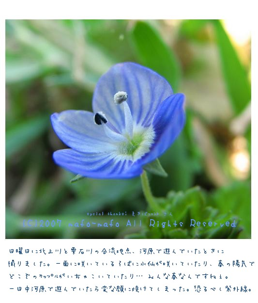 c0080667_2145661.jpg